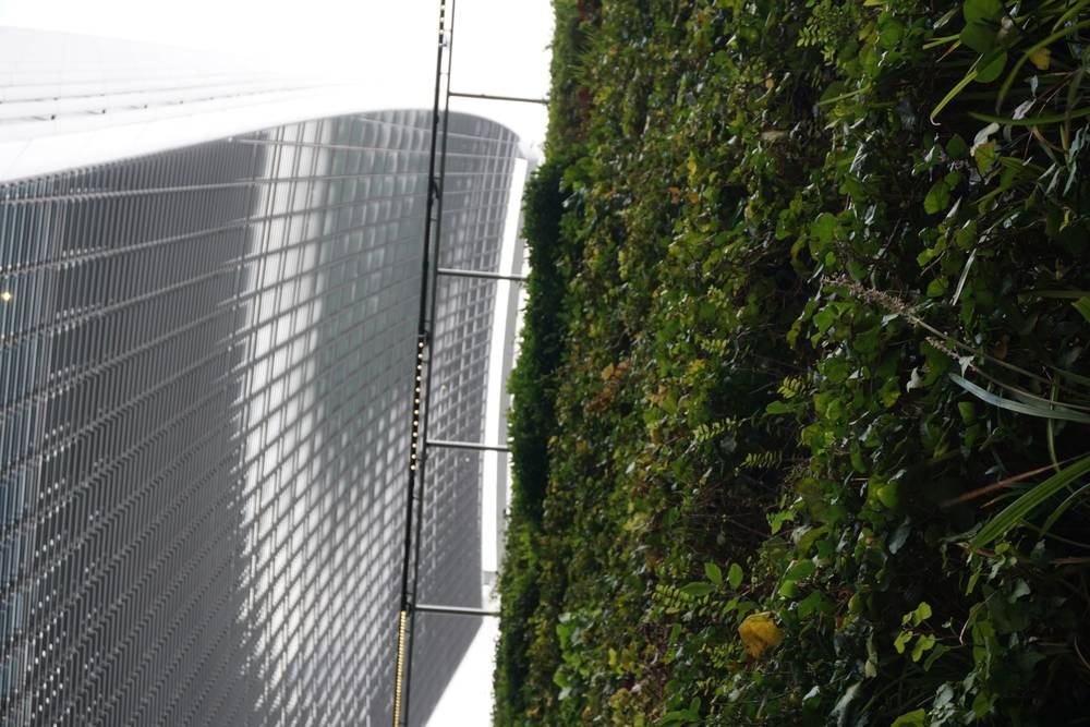 The Green Wall by the Sky Garden on an Eco Architecture Tour